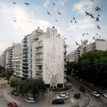 002-edificio-indio_copia